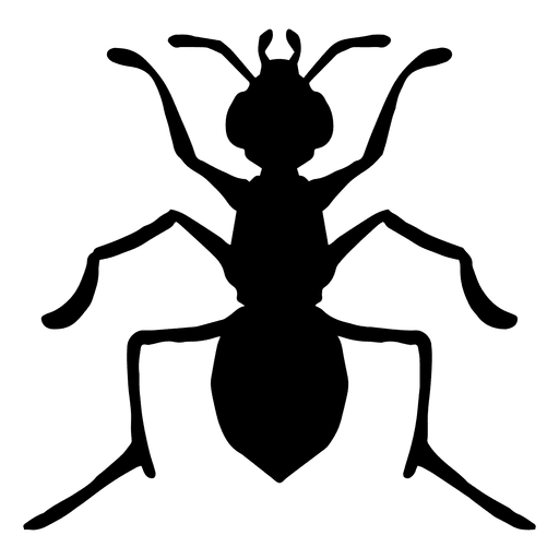 512x512 Insect Silhouette Transparent Png Or Svg To Download