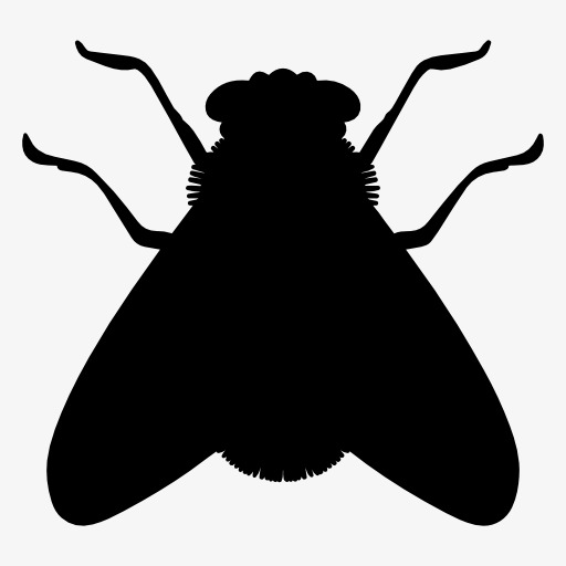 512x512 Silhouette Flies, Insect, Animal, Projection Png Image And Clipart
