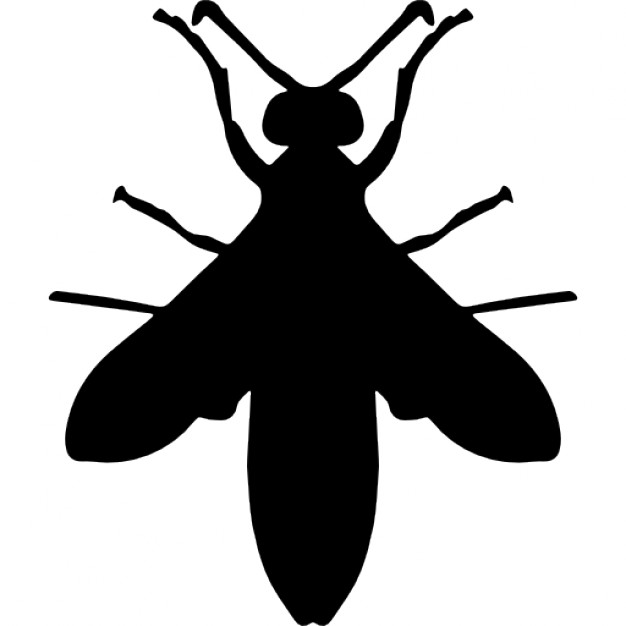 626x626 Wasp Silhouette Icons Free Download