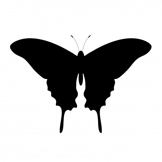 615x615 Butterfly Silhouette Clipart Free Stock Photo