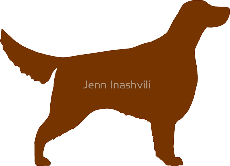 800x578 Irish Setter Silhouette(S) Stickers By Jenn Inashvili Redbubble