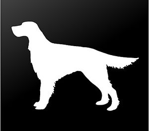 300x264 Irish Setter Vinyl Decal Car Window Laptop Red Setter Dog
