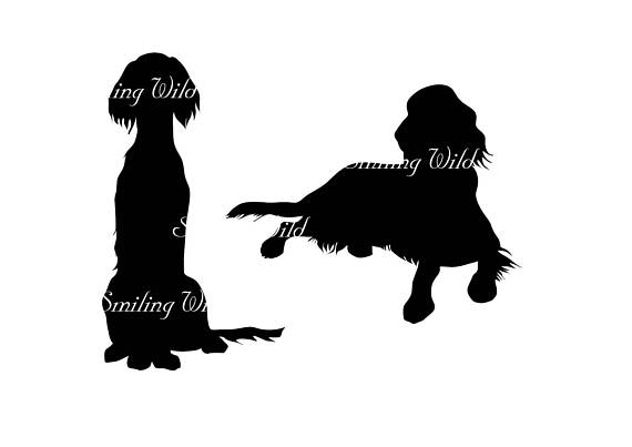 570x403 Irish Setter Silhouette Svg Clipart Cut Out File Irish Setter