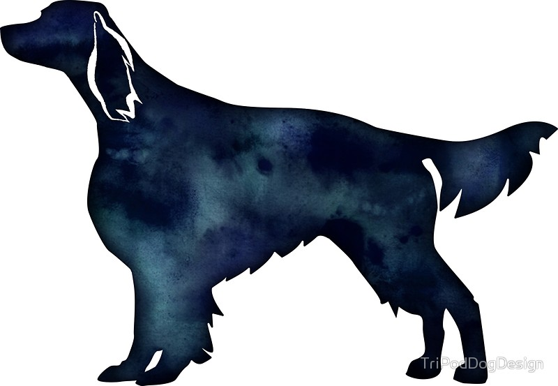 800x553 Irish Red And White Setter Dog Breed Black Watercolor Silhouette