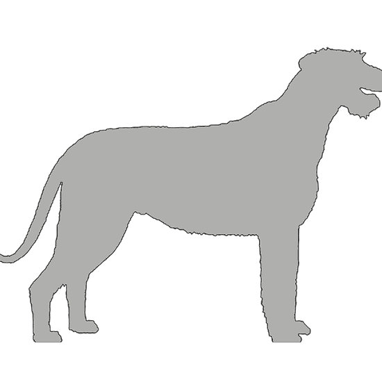 550x550 Irish Wolfhound Color Silhouette Dog Breeds Irish