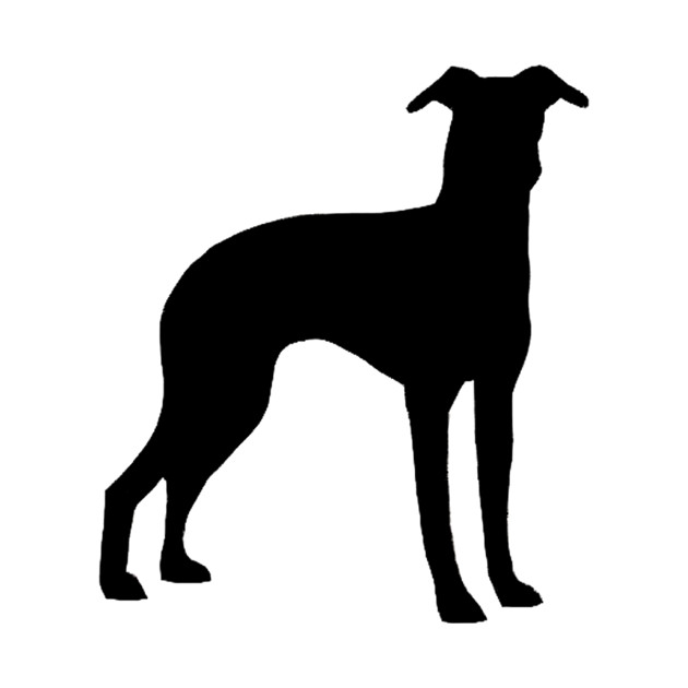 630x630 Italian Greyhound Silhouette