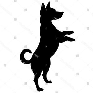 300x300 Jack Russell Terrier Vector Black Silhouette Ardiafm