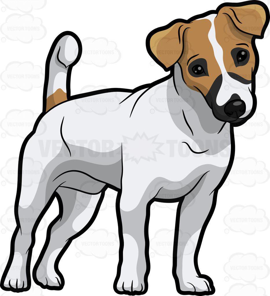 933x1024 Jack Russell Terrier Cartoon Clipart