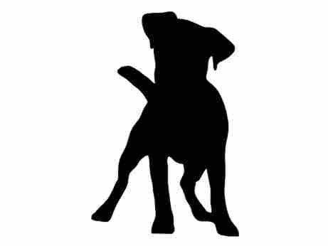 461x346 Jack Russell Terrier Dog Breed Silhouette By Stickemupdecalsaz