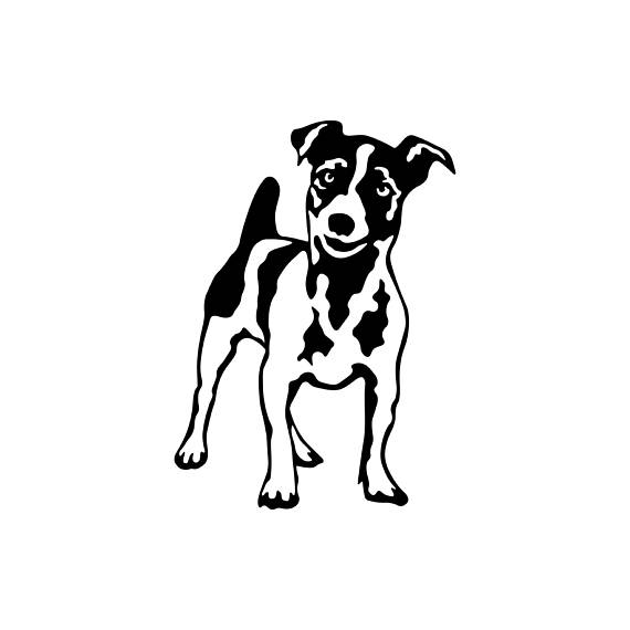 570x570 Jack Russell Terrier Dog Graphics Svg Dxf Eps Png Cdr Ai Pdf