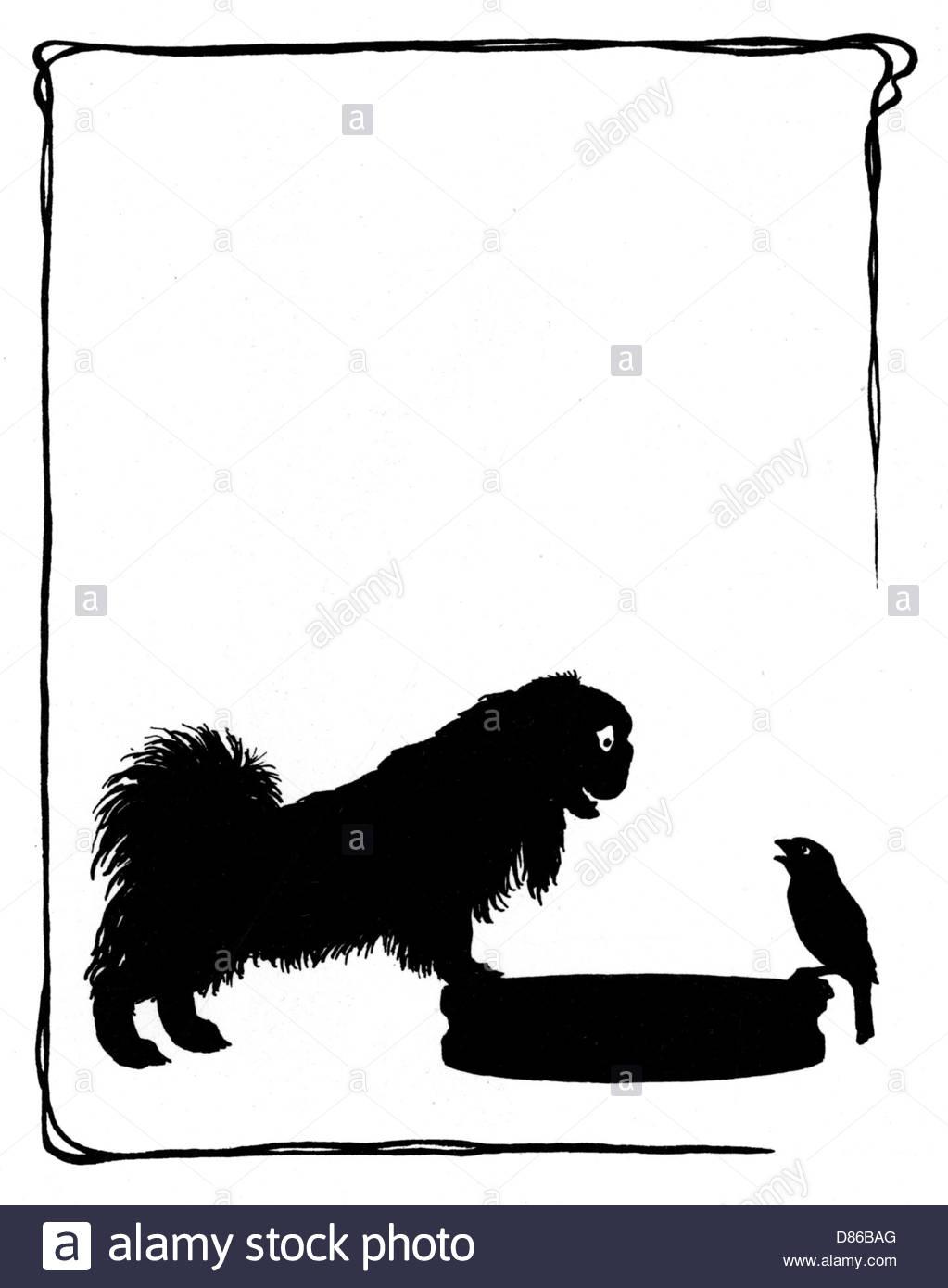 1023x1390 Koko The Pekinese Dog With Jack Sparrow Stock Photo 56688984