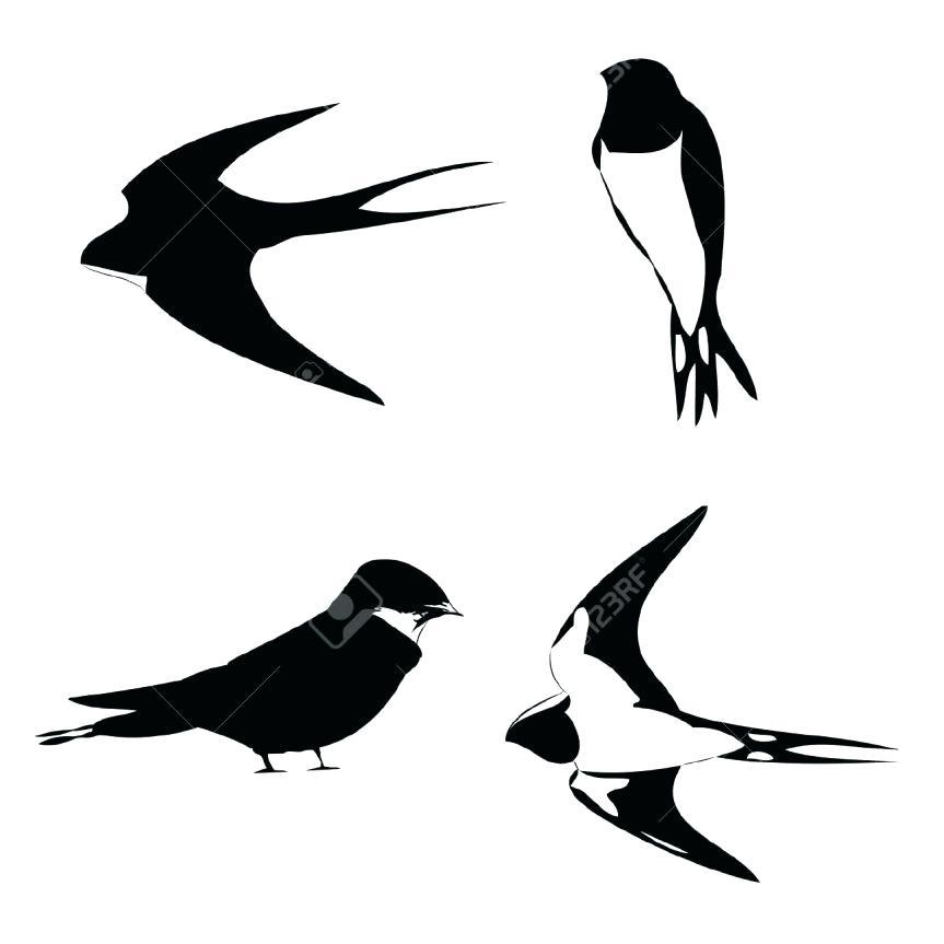 863x863 Sparrow Outline Tattoo Grey Swallow Tattoo Design Jack Sparrow