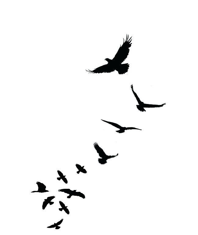 650x773 Sparrow Tattoo Outline Sparrow Tattoo Jack Sparrow Tattoo Outline