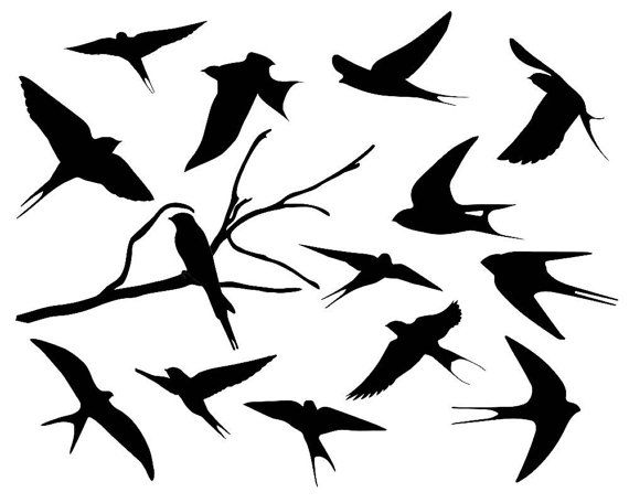 570x456 Swallow Silhouette Clipart Bird Silhouette By Theclipartpress
