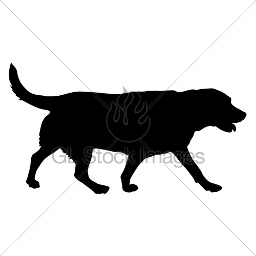 500x500 Labrador Dog Silhouette On A White Background Gl Stock Images
