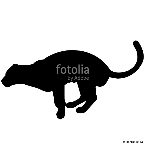 500x500 Jaguar Silhouette Vector Graphics Stock Image And Royalty Free