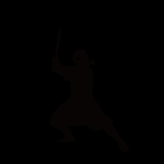 640x640 Ninja Transformation Experience! Let's Go To Ninja