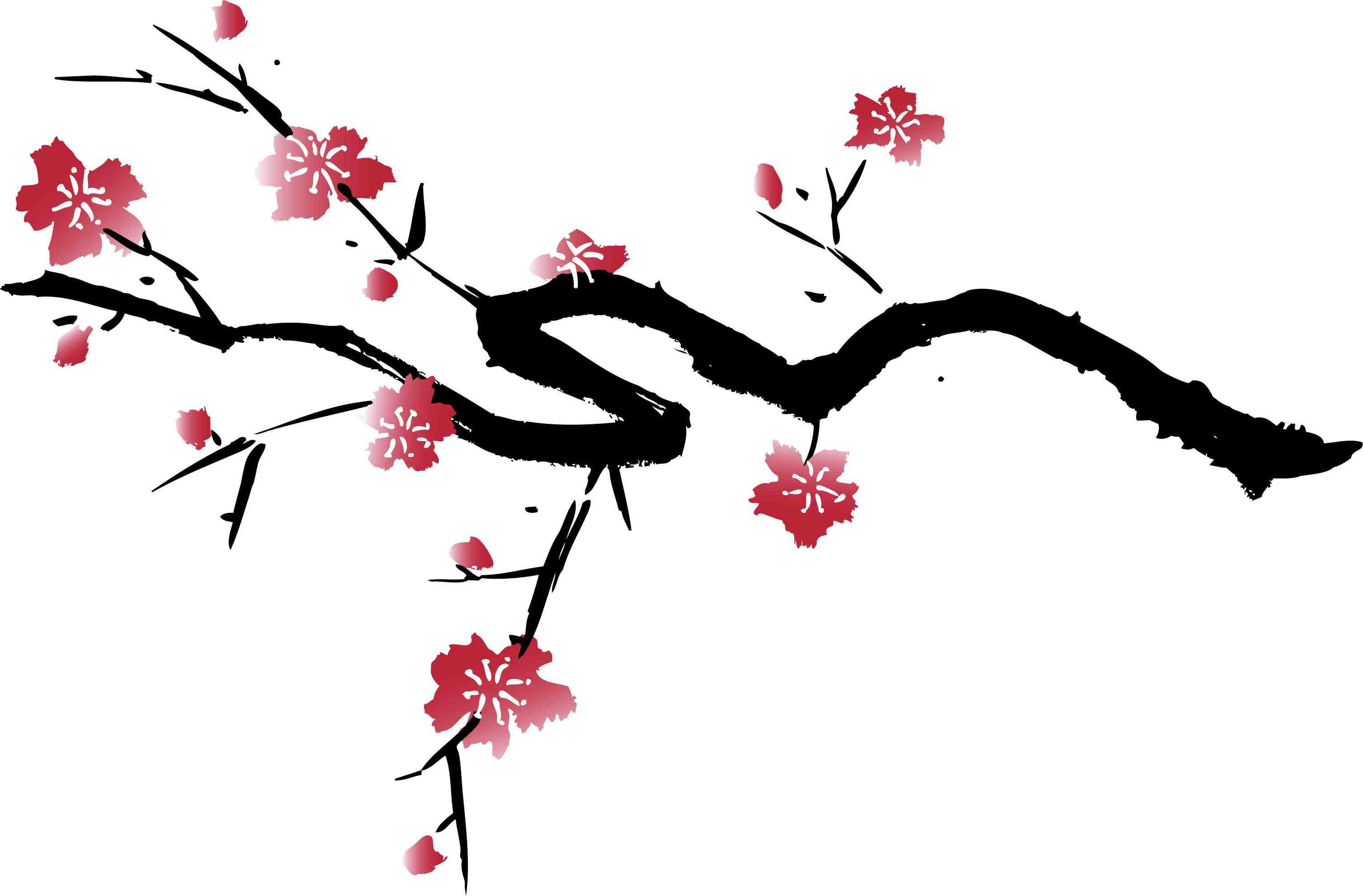 3017x1985 Best Hd Japanese Cherry Blossom Tree Art Vector Images