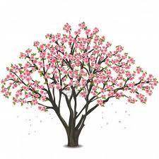 225x225 Cherry Blossom Tree Sketch
