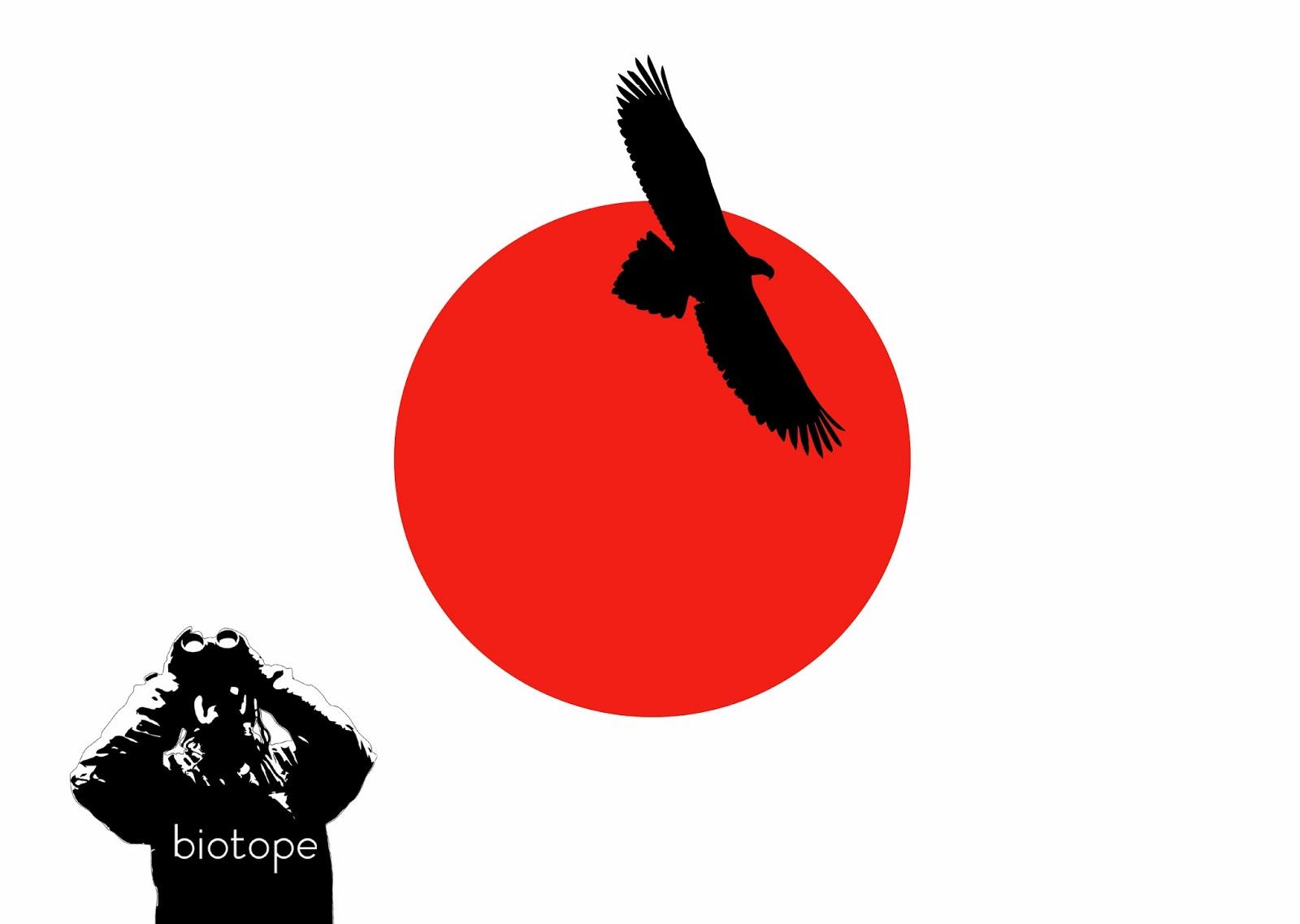 1600x1138 Biotope Birding Japan