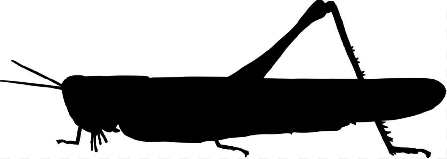 900x320 Jiminy Cricket Beetle Silhouette Clip Art