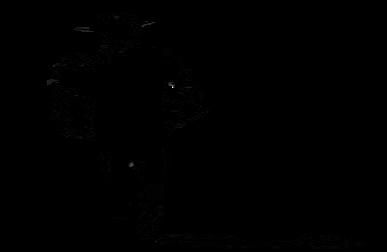387x252 John Wayne Silhouette By Maxweston