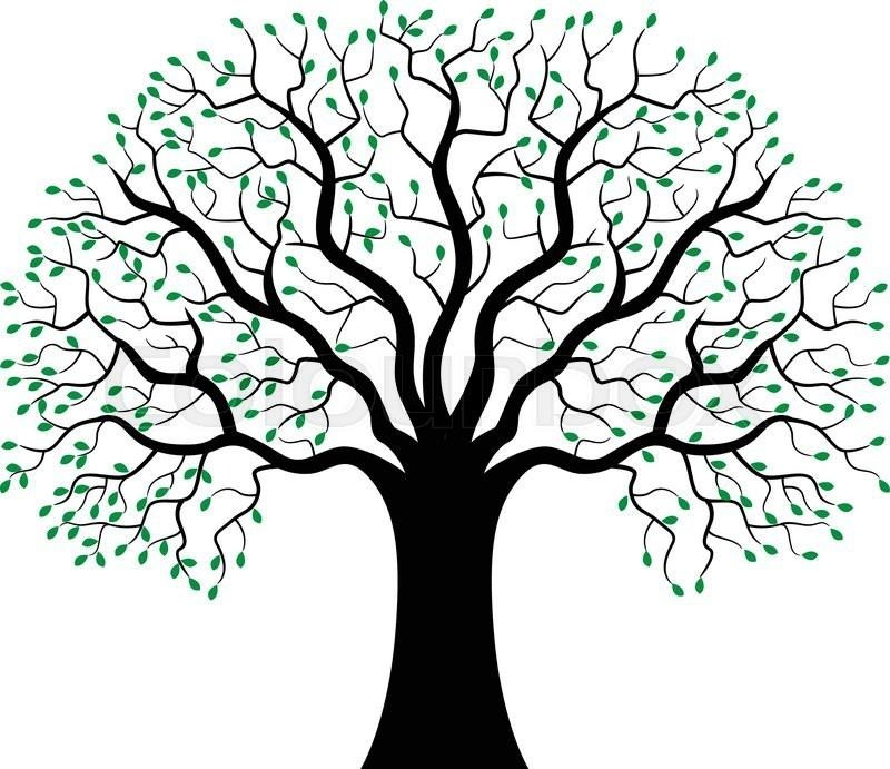 800x691 Green Tree Silhouette Simple Living Tree In The World Places