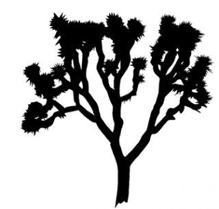 320x305 Joshua Tree Clipart