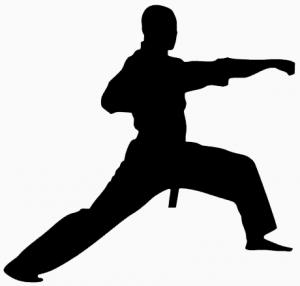 300x286 Ttjc Tennessee Taekwondo Judo College