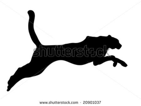 450x339 Cat Silhouette Stock Photos, Cat Silhouette Stock Photography, Cat
