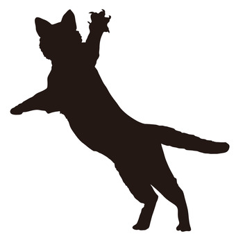 340x340 Free Cliparts Silhouette, Cat