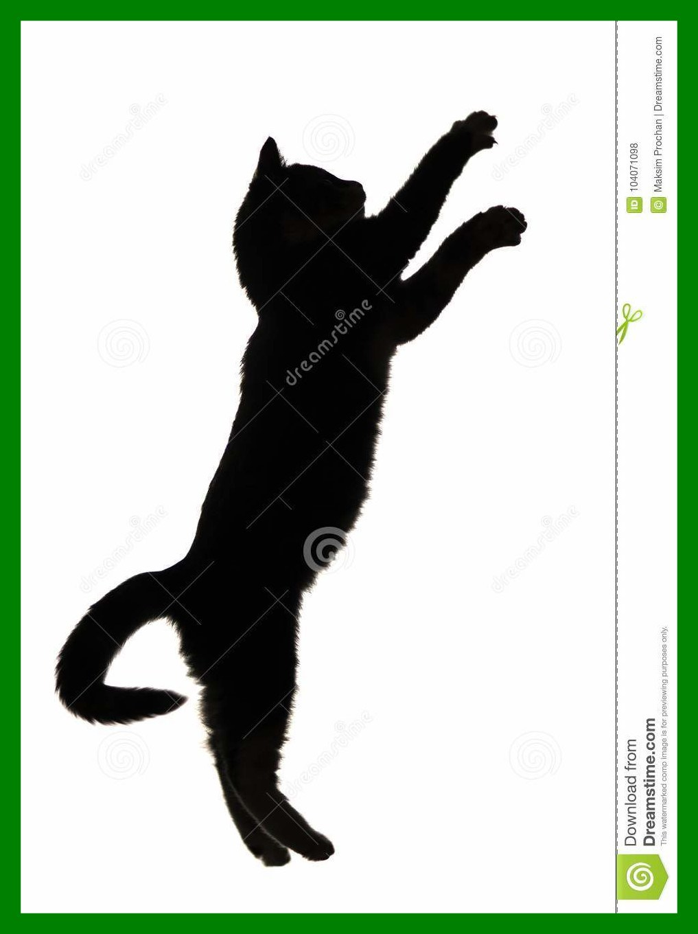 1017x1360 Awesome Black And White Silhouette Of Kitten Jumping Upwards