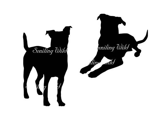570x403 Black Mouth Cur Svg Silhouette Cut Out File Clipart Dog