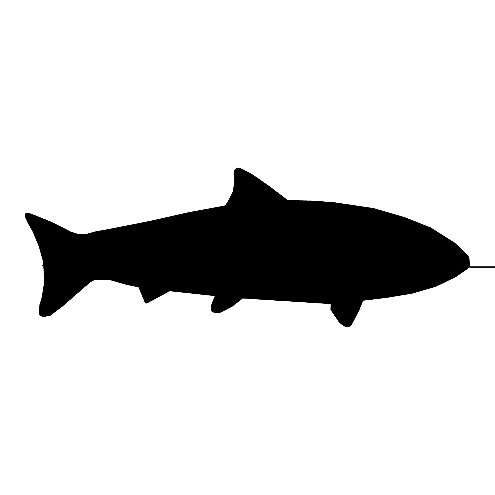 1920x1920 Fish Jumping Silhouette
