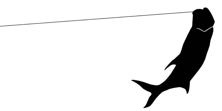 720x359 Jump