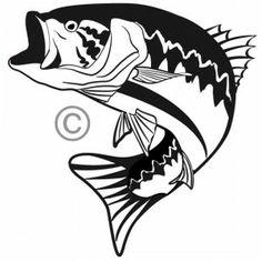 236x236 Bass Fish Vector Clipart