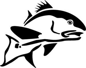 300x237 Silhouette Clipart Speckled Trout