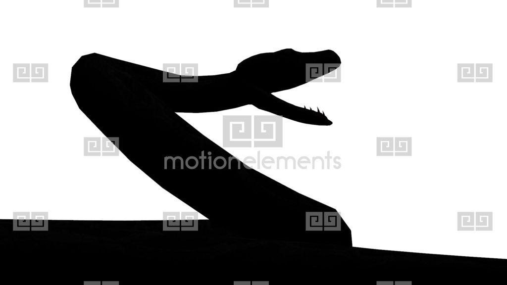 1024x576 Snake Ampamp Jungle Carpet Python Open Mouth Attack,sliding Sketch