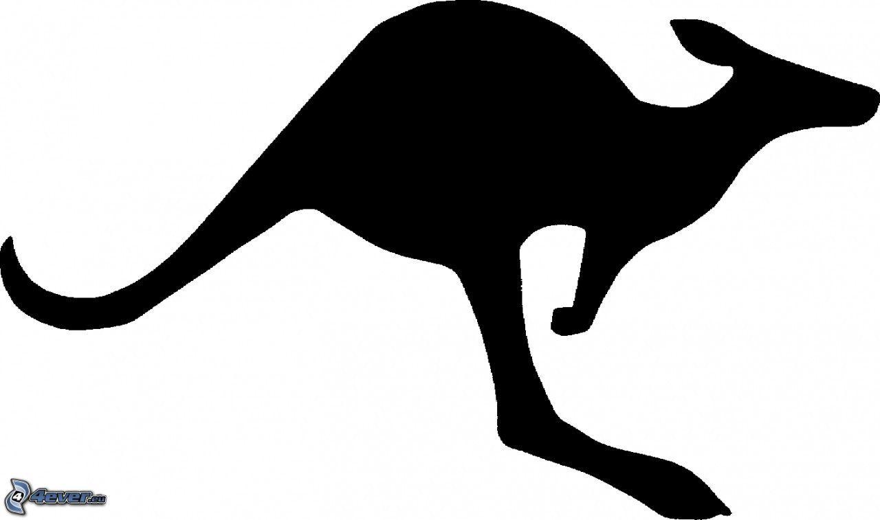 1280x757 Silhouette Of Kangaroo