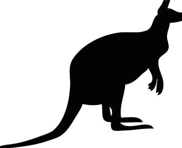 596x485 Kangaroo, Jerk, Dark, Silhouette, Outline, Black, Jump, Australia
