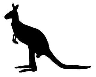 320x258 Kangaroo Silhouette 3 Decal Sticker