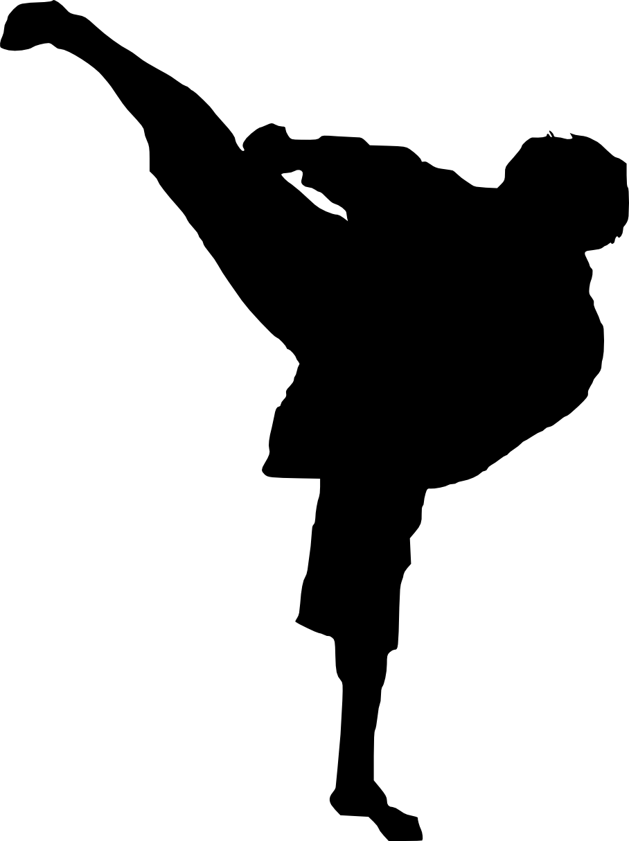 Karate Girl Silhouette