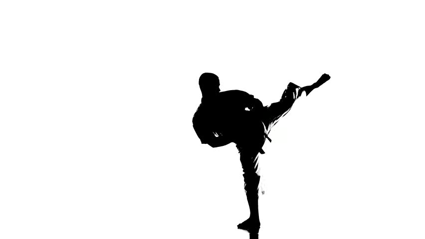 Karate Kick Silhouette