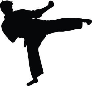 300x281 Karate Kick Silhouette (Rsk)car Bumper Vinyl Top Quality Sticker