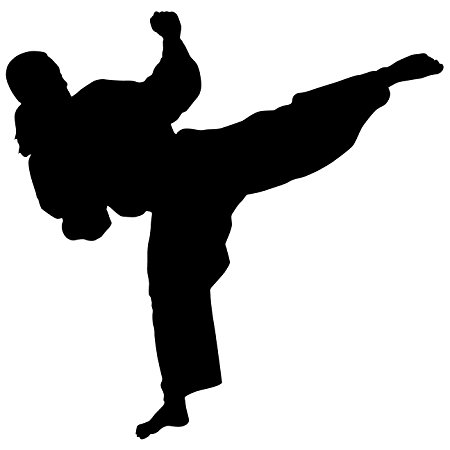 450x450 Martial Arts Wall Decal Sticker 30