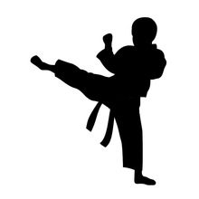 220x220 Popular Karate Style Buy Cheap Karate Style Lots From China Karate