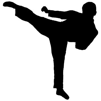 355x355 Martial Arts Wall Decal Sticker 15