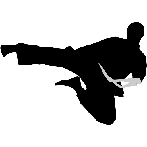 512x512 Karate Clipart Silhouette Transparent Png
