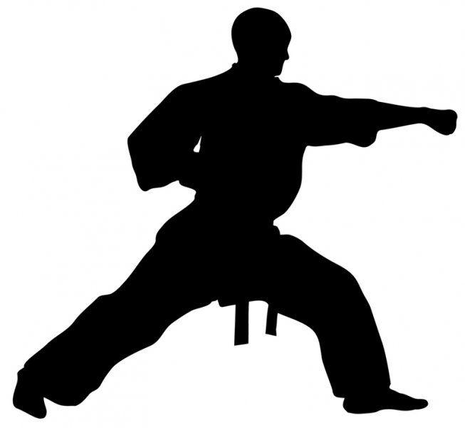 653x600 Taekwondo Silhouette