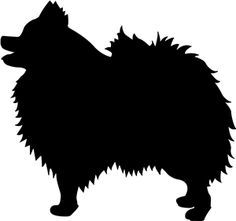 236x221 The Black Silhouette Of A German Spitz Stock Photography